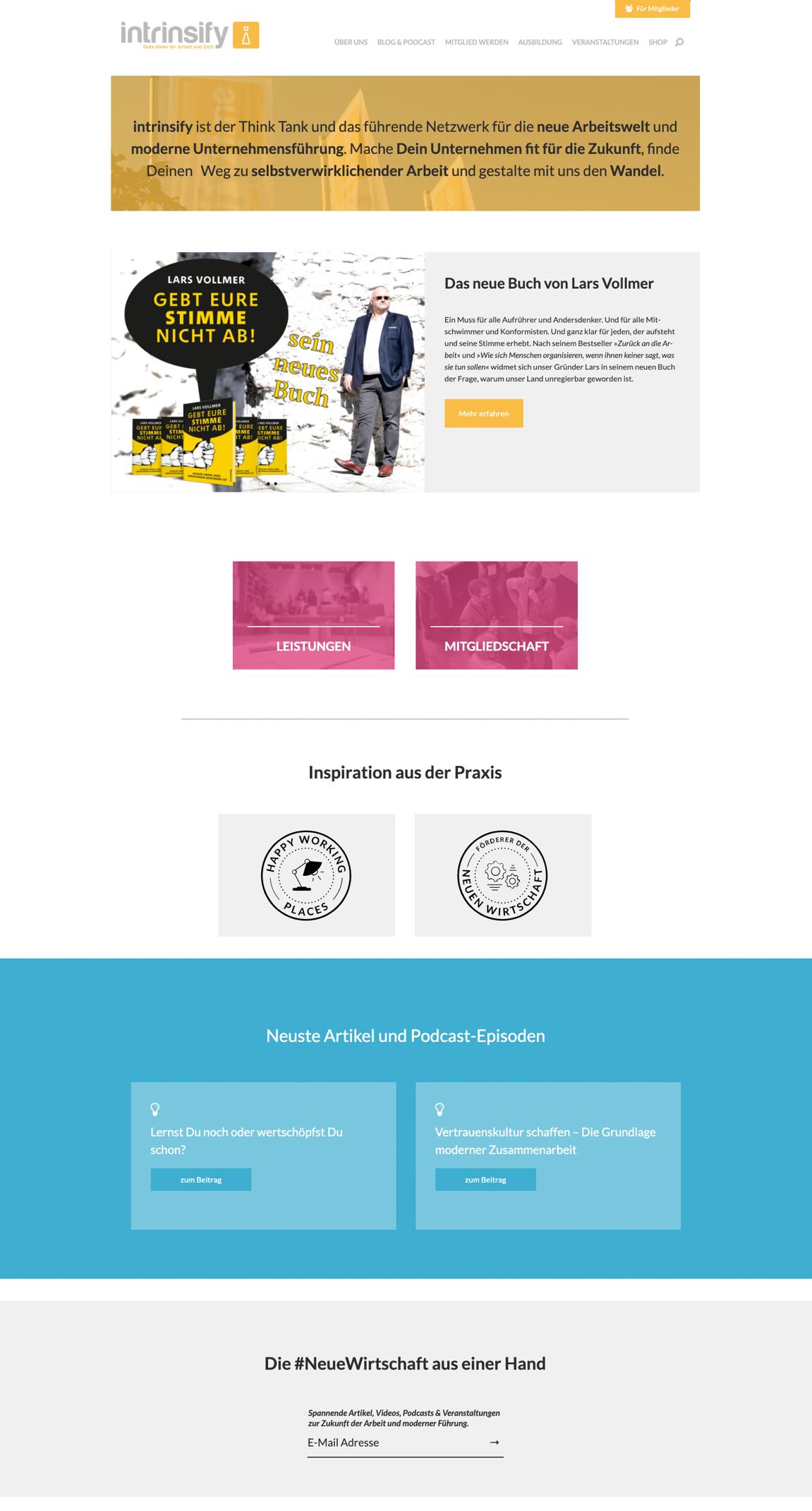Webseite - intrinsify